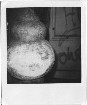 polaroid-600-nb-borne-entree-immenble-toulouse-1997