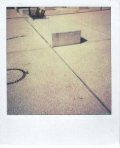 polas_d_oc_photo
